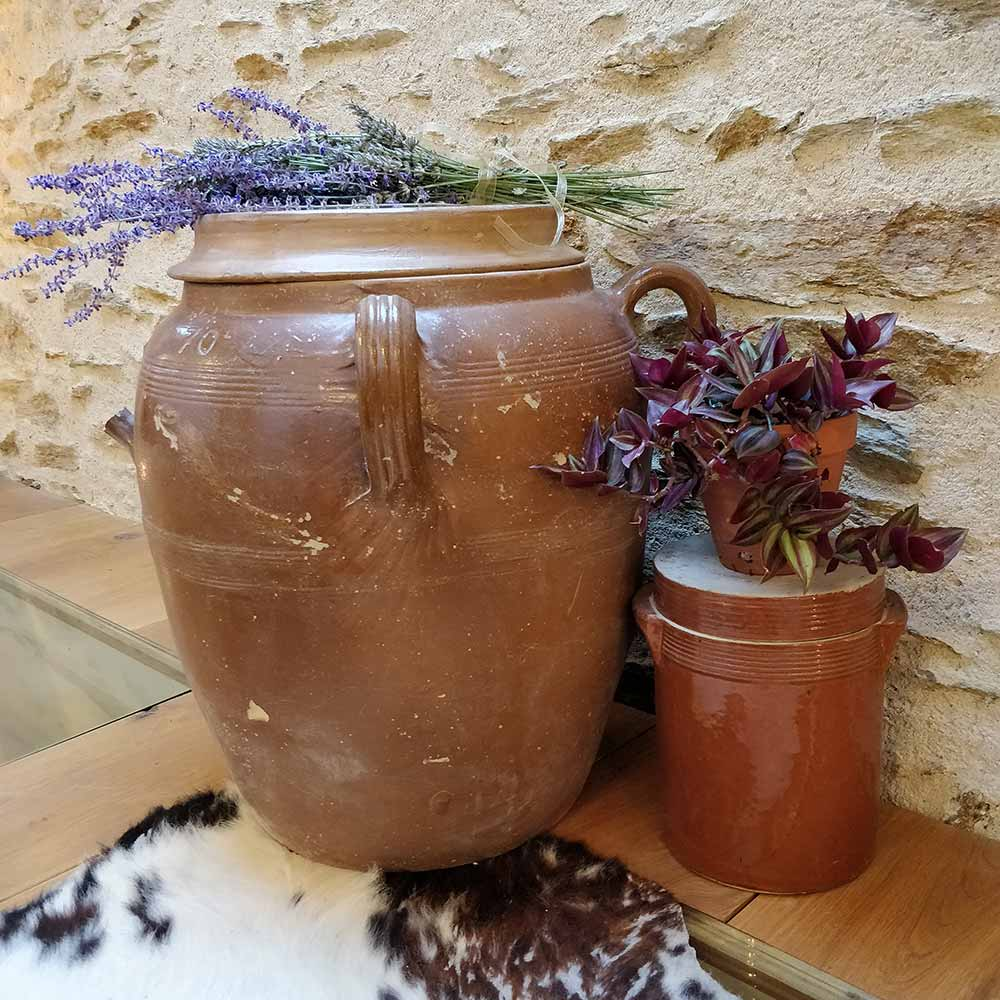 Garden pots and French lavender