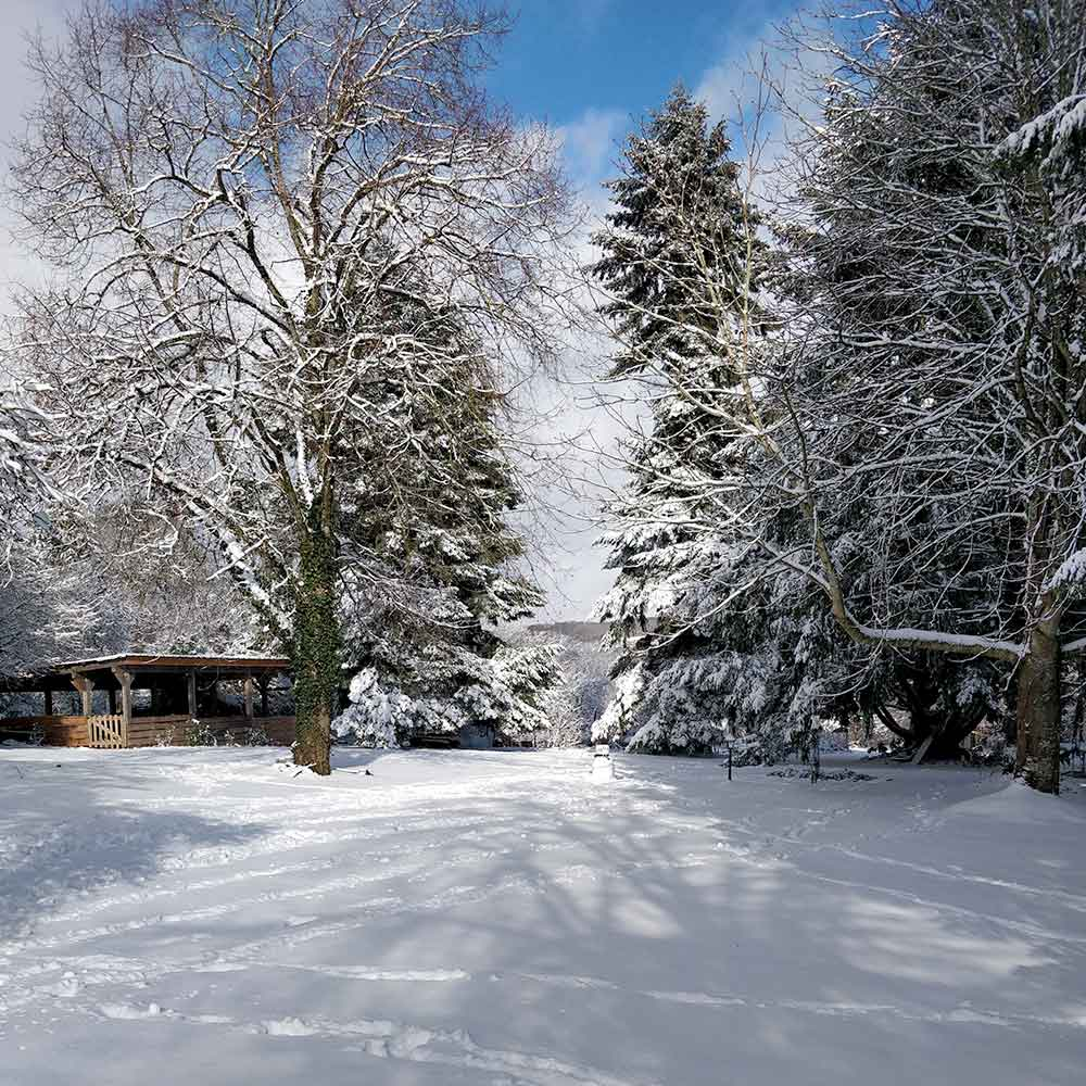 Garden in winter at Manoir Delarue